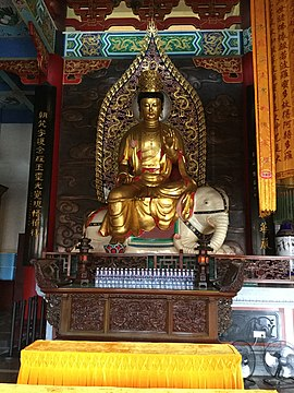Samantabhadra, Bodhisattva