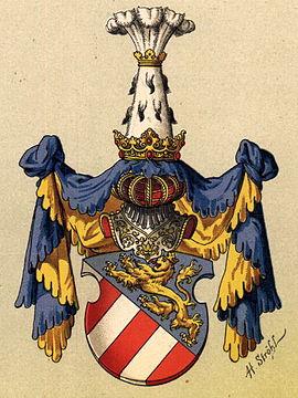 Meinhard II., Tirol, Graf