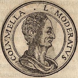 Columella, Lucius Iunius Moderatus