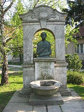 Sajnovics, János